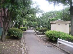 D旧呑川緑地②(中の様子).JPG