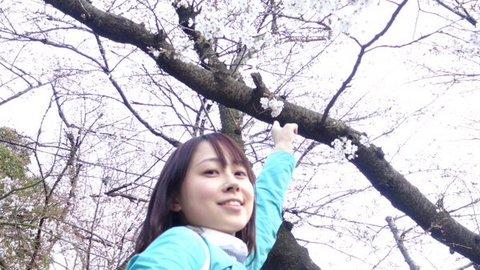 加納アナ 桜と私2.jpg