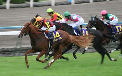 640px-72nd_Kikka-sho_20111023.jpg