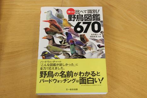 20140804_04.jpg