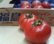 いわき トマト.jpg