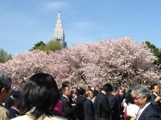Gyoen2014.JPG
