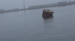 74海ドラム缶 写真.JPGのサムネール画像のサムネール画像のサムネール画像