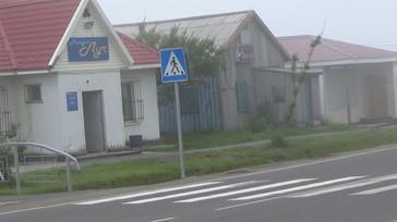 75交通標識 歩く 写真.JPG