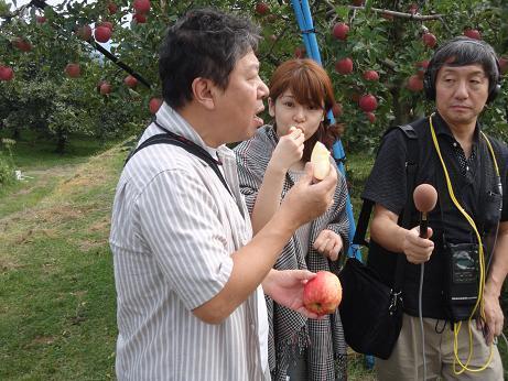 リンゴ園.JPG