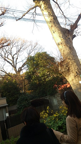 新宿⑤.jpg