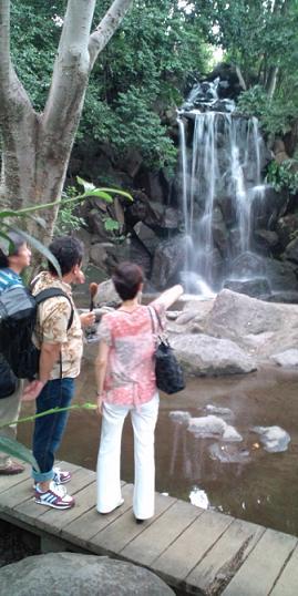 滝②.jpg