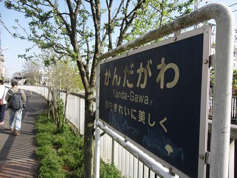 神田川5.JPG