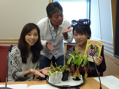 食虫植物研究家.jpg