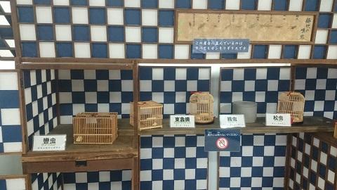多摩動物公園・秋の虫.jpg