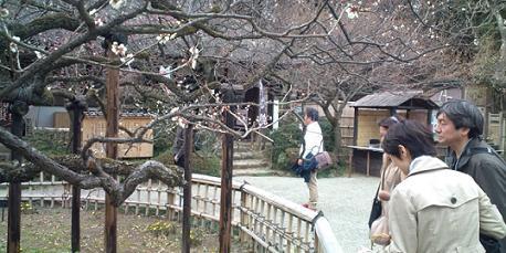 探訪・百草園jpg