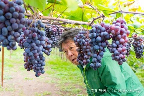 那須・ワイン①.jpg