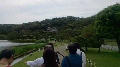 三溪園・遊歩道③.jpg