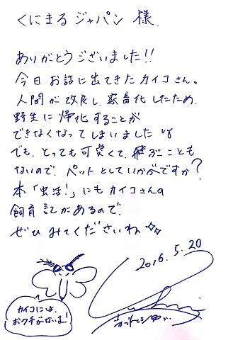 kabutomushi20160520.jpg