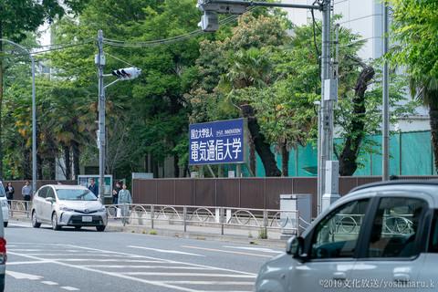 44hal_20190510-9B_03245_Sony.jpg