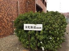 16_0404_2.JPG