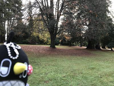 スタンレイ公園.jpg