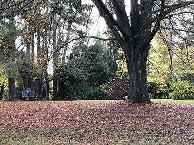 スタンレイ公園withリス.jpg