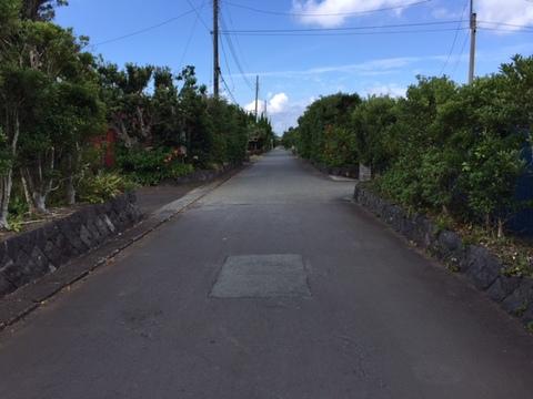 八丈島の道.JPGのサムネール画像