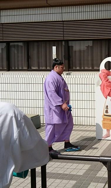 サキドリ2018―0329 (7).jpg