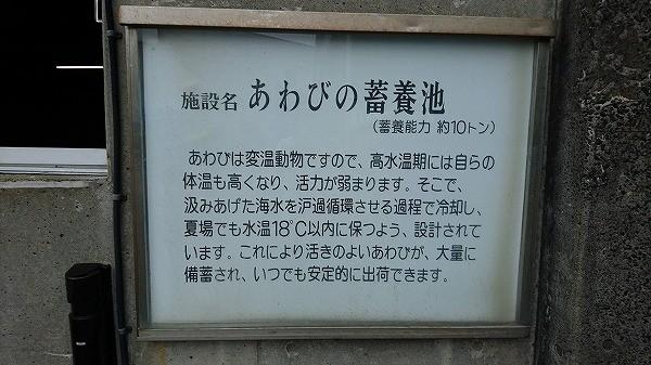 サキー20191010 (23).jpg