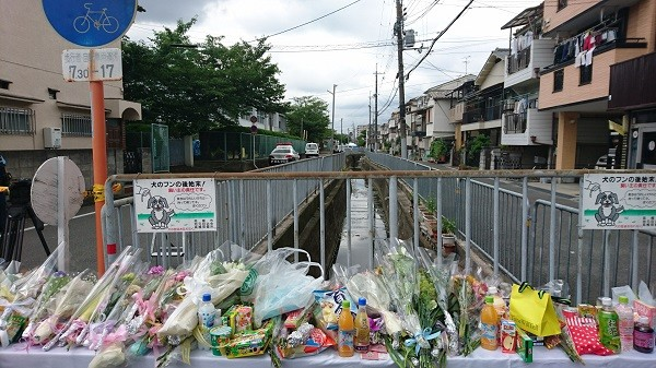一美20180620ー大阪地震 (8).JPG