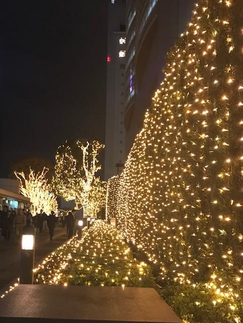 新宿イルミネーション2.jpg