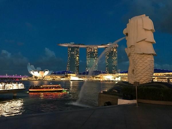 現地・シンガポール20180611 (2).jpg