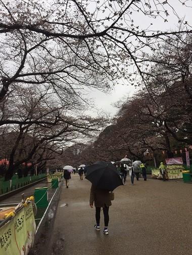 細木記者2018321祝.jpg