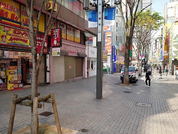 sakidori20200408 (1).jpg