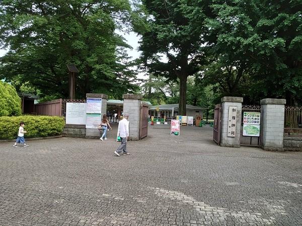 sakidori20200602 (3).jpg