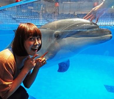 イルカと♪.jpg