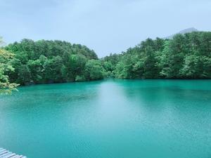 青青緑➁.jpg