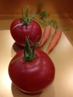 写真 tomato にんじん.JPG
