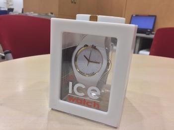 icewatch4.JPG