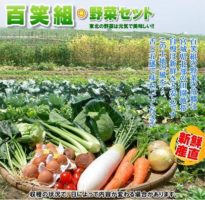 yasai-01.jpg