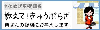 きゅうぷらざ
