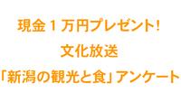 『新潟の観光と食』についてのアンケート実施中!抽選で計5名様に「現金1万円」プレゼント!<font color=red>アンケートご応募はこちらから</font>
