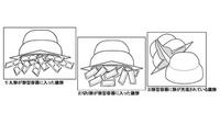 【『鏡餅』に関する簡単なアンケートアンケート実施中!抽選で計5名様に「現金1万円」プレゼント!締め切りは2月6日 詳しくはこちらから】